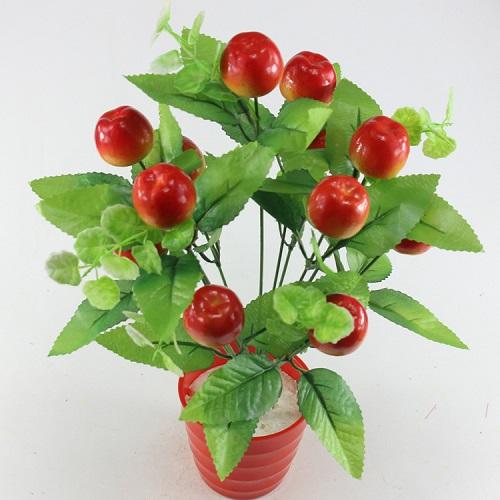 bonsai con frutta